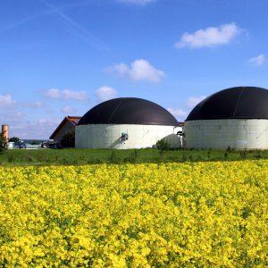 Biogas installatie